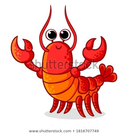 Kırmızı ıstakoz deniz gıda örnek düzenlenebilir Stok fotoğraf © ConceptCafe