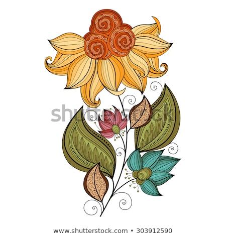 vector · mooie · gekleurd · contour · bloem · vector · bloem - stockfoto © lissantee