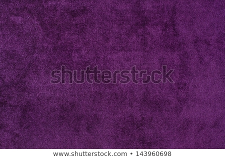 velvet purple Stock photo © nicemonkey