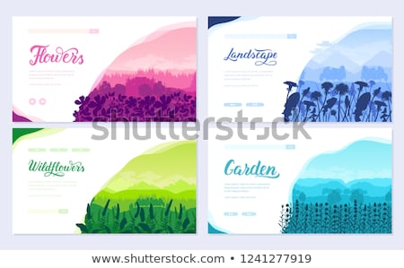 Beautiful flowers on the mountainside vector brochure cards set. Summer nature template of flyear, m Stock photo © Linetale