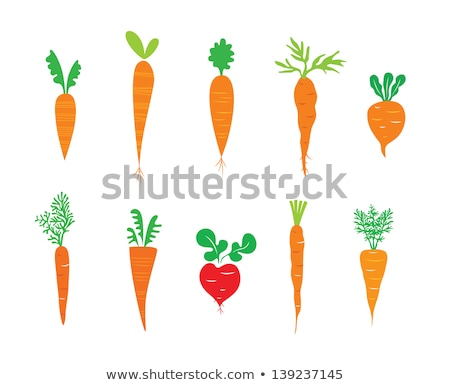 i love carrots heart of orange carrots vector illustration stock photo © popaukropa