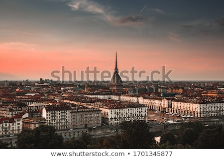 turin view stock photo © claudiodivizia