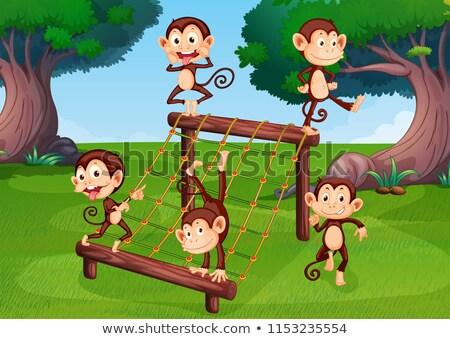 Aap spelen speeltuin illustratie boom kunst Stockfoto © colematt