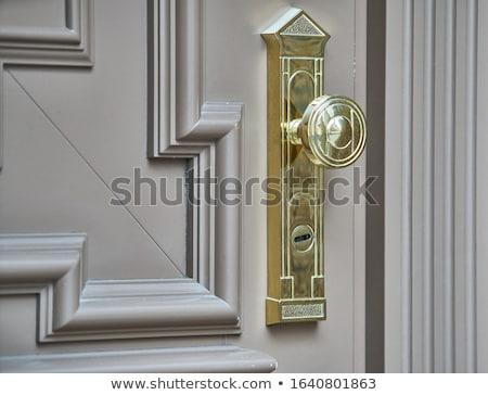 Wooden door with metal lock Stock photo © colematt