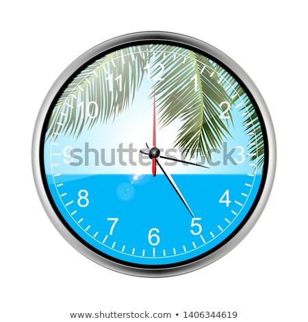 отпуск тропические праздников стены часы профессиональный Сток-фото © elaine
