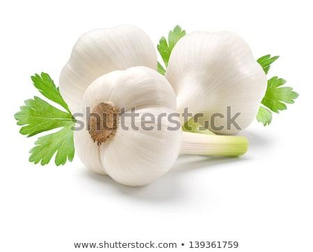 Jonge knoflook geïsoleerd witte top Stockfoto © Bozena_Fulawka