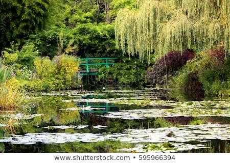 пруд другой цветы лет день Сток-фото © neirfy