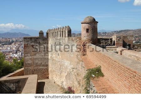 Twierdza malaga widoku Hiszpania drzewo miasta Zdjęcia stock © borisb17