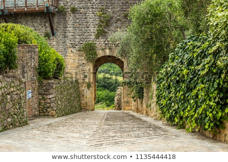 Archway in a stone wall  Stock photo © grafvision