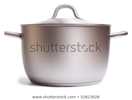 Pote inoxidável cozinhar utensílios de cozinha cor vetor Foto stock © pikepicture
