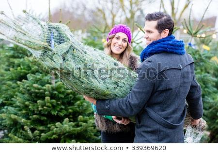 kadın · adam · satın · alma · noel · ağacı · pazar · çift - stok fotoğraf © kzenon