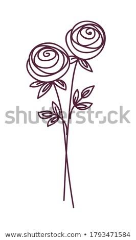 Rose stylisé fleur symbole Photo stock © ESSL