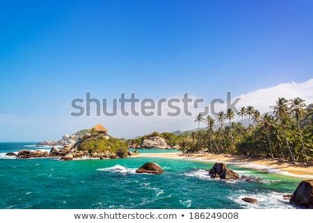 Praia tropical naturalismo parque Colômbia cênico ver Foto stock © boggy