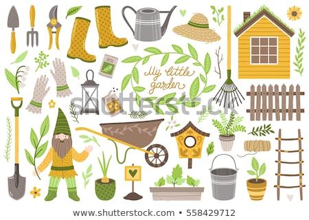 Gnom roślin ogród biały ilustracja Zdjęcia stock © bluering