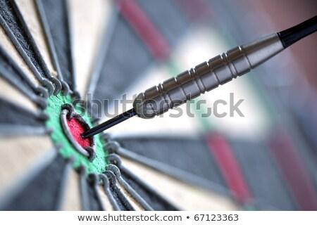 Darts szem közelkép siker cél cél Stock fotó © dmitry_rukhlenko
