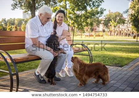 Paar Fuß Hund Landschaft Bäume Gläser Stock foto © photography33