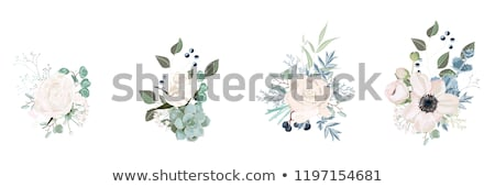 White flowers and a red heart illustration  stock photo © Julietphotography