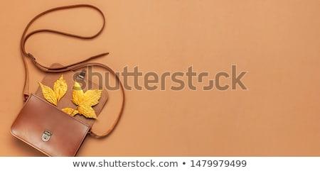 Zíper folhas ilustração 3d dourado vermelho amarelo Foto stock © tashatuvango