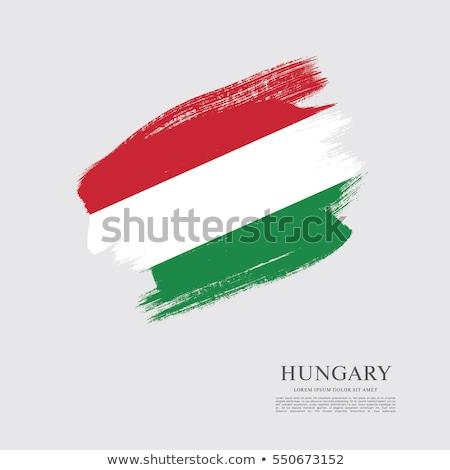 Гранж флаг Венгрия старые Vintage гранж текстур Сток-фото © HypnoCreative