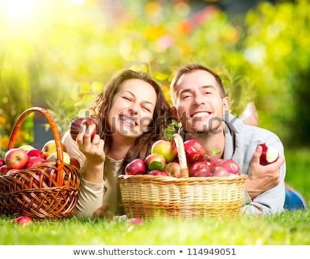Boldog pár park gyűlés almák fű Stock fotó © photography33
