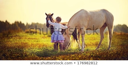 child caressing a horse stock photo © photography33