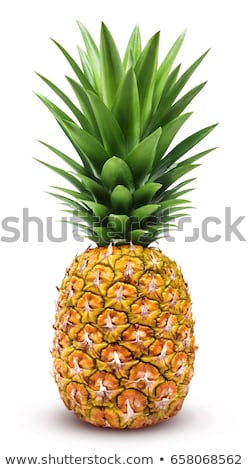 Ananas dikey yeşil Asya sıcak kuşak Stok fotoğraf © calvste