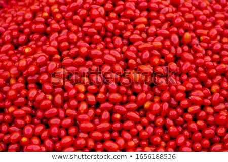 Full frame tomaat vers Rood tomaten vruchten Stockfoto © prill