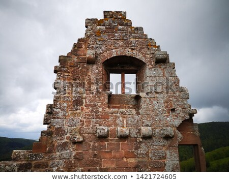 detail of castle Fleckenstein Stock photo © prill