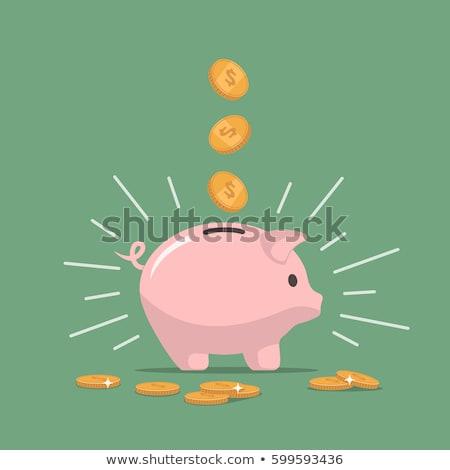 Spaarvarken schenken geïsoleerd witte geld financieren Stockfoto © raywoo