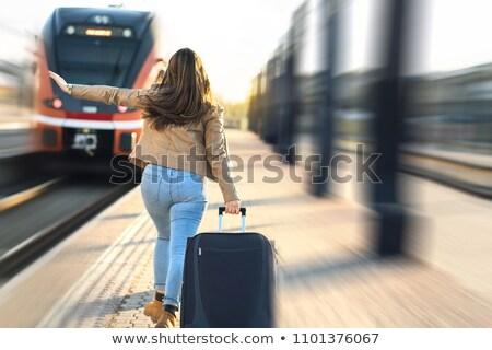 nő · bőrönd · integet · kéz · fényes · kép - stock fotó © dolgachov