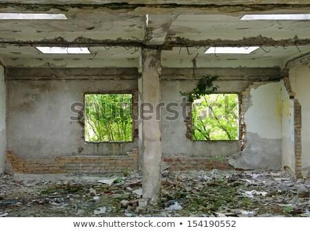 törött · keret · antik · képkeret · törött · üveg · koszos - stock fotó © sirylok