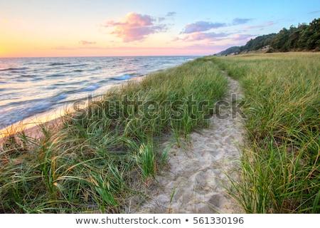 Tó Michigan tengerpart tengerpartok pad felhős Stock fotó © saddako2