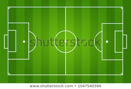 Green soccer field with white marking. vector Stock photo © odes