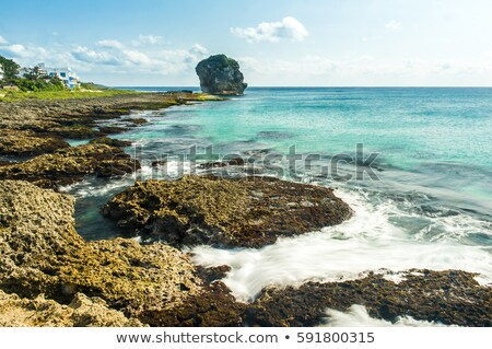 Chuanfan Rock at coastline Stock photo © elwynn