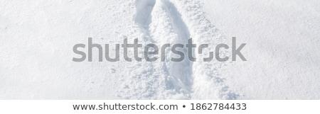 フットプリント 雪 ブート パターン 白 ストックフォト © Anterovium