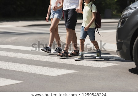 シマウマ 歩行者 都市 画像 道路 塗料 ストックフォト © stevanovicigor