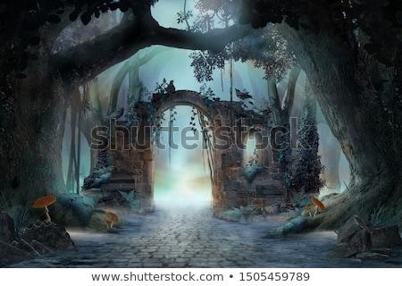 mystérieux · forêt · halloween · cadre · sourire · chat - photo stock © olgadrozd