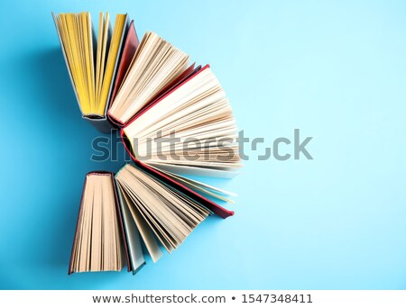 business education on light blue in flat design stock photo © tashatuvango