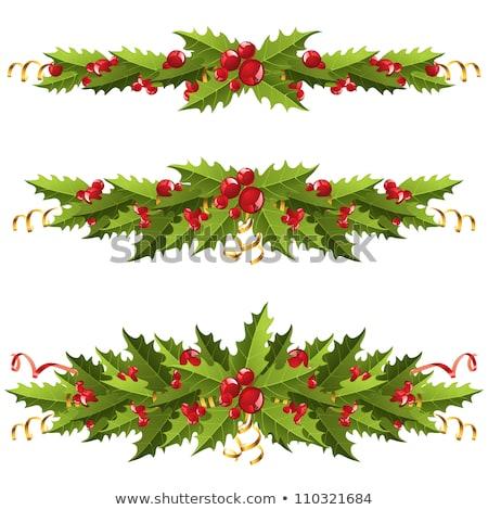 Noel · çelenk · vektör · görüntü · eps · 10 - stok fotoğraf © beholdereye