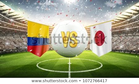 Voetbal Japan vlag toonhoogte voetbal wereld Stockfoto © stevanovicigor