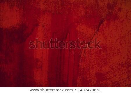 sangrento · parede · mão · imprimir · sangue · agitar-se - foto stock © tiero