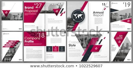 contabili · libro · titolo · business · libri - foto d'archivio © tashatuvango