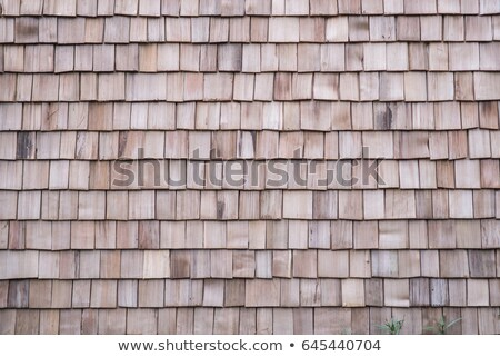 Old roof texture Stock photo © stevanovicigor