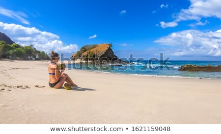 Woman in pink bikini at a beach, watching the sea Stock photo © lightpoet