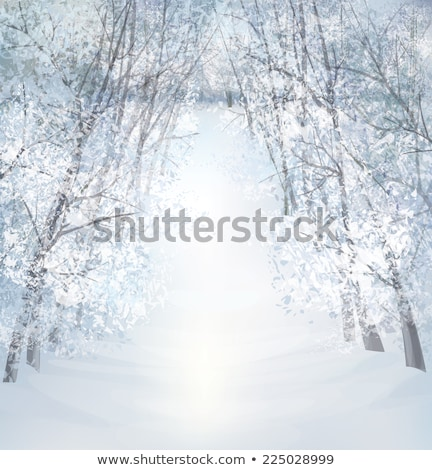 Stock photo: Winter forest grunge design