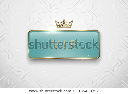 luxury silver card with card symbols ornament stock photo © liliwhite