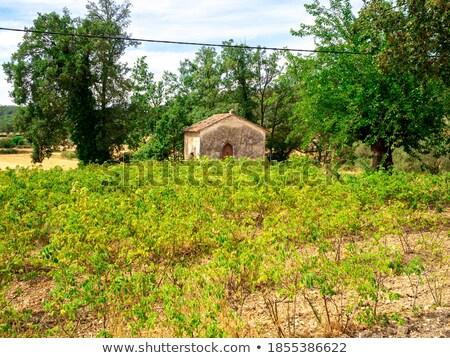 Klein kapel velden najaar architectuur lopen Stockfoto © CaptureLight
