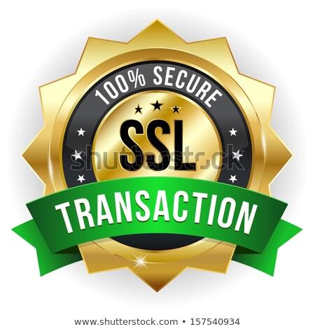 Сток-фото: Secure Transaction Green Vector Icon Design