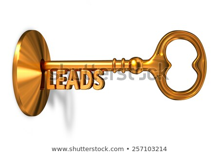 Dorado clave ojo de la cerradura aislado blanco metal Foto stock © tashatuvango