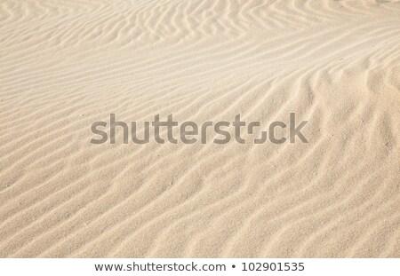 Pormenor areia praia água pôr do sol fundo Foto stock © Arrxxx